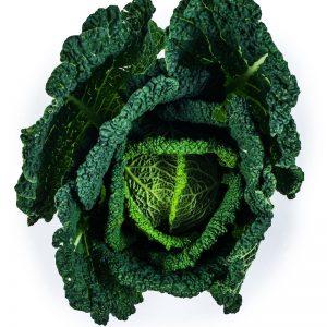 Caldwells Savoy Cabbage
