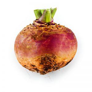 Caldwell's Globular Turnip